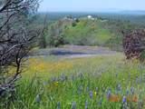 Jones Valley Trail - Photo 5