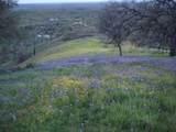 Jones Valley Trail - Photo 6