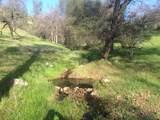 Jones Valley Trail - Photo 7