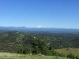 Jones Valley Trail - Photo 9