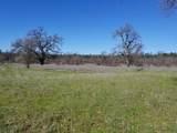 8.83 Acres Oak Run Rd - Photo 10