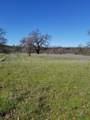 8.83 Acres Oak Run Rd - Photo 11
