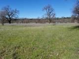 8.83 Acres Oak Run Rd - Photo 13