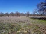 8.83 Acres Oak Run Rd - Photo 15