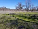 8.83 Acres Oak Run Rd - Photo 16