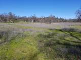 8.83 Acres Oak Run Rd - Photo 19