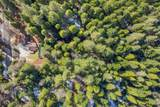29412 Fenders Ferry Rd - Photo 46