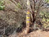 0 Camino Vista - Photo 4