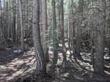Savannah Way - Photo 3