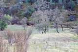 5.42 Acres Bear Valley Trail - Photo 3