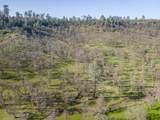 100.87 Acres Rim Rock Ln - Photo 38