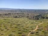 100.87 Acres Rim Rock Ln - Photo 50