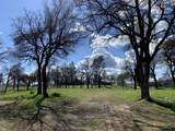 16947 Spring Creek Rd - Photo 20
