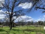 16947 Spring Creek Rd - Photo 36