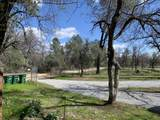 16947 Spring Creek Rd - Photo 6