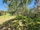 4 Acres Thompson Lane - Photo 7