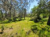 4 Acres Thompson Lane - Photo 8