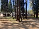 45088 Pine Shadows - Photo 13