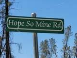 16172 Hope So Mine Rd - Photo 23