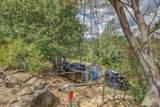13012 Dry Creek Rd - Photo 40