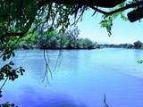 Riverland Dr - Photo 1