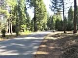 9283 Mountain Meadow Rd - Photo 3