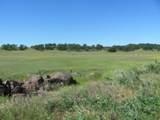 61 Acres Millville Plains Rd - Photo 10