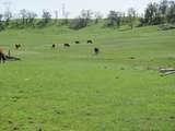 61 Acres Millville Plains Rd - Photo 15