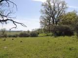 61 Acres Millville Plains Rd - Photo 29