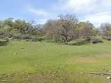 61 Acres Millville Plains Rd - Photo 41