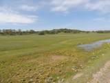61 Acres Millville Plains Rd - Photo 51