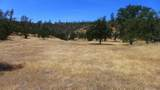 Lot 169 Fiddlers Rd - Photo 1