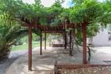 11780 Bay Tree Ln - Photo 50