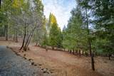 7426 Shasta Forest Dr - Photo 37