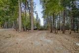 7426 Shasta Forest Dr - Photo 38