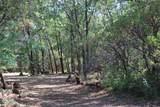 28824 Shingle Creek Ln - Photo 1