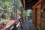 7464 Shasta Forest Dr - Photo 10