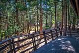 7464 Shasta Forest Dr - Photo 12