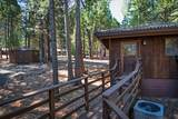 7464 Shasta Forest Dr - Photo 16