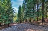 7464 Shasta Forest Dr - Photo 32