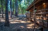 7464 Shasta Forest Dr - Photo 8