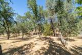 12252 Old Ranch Rd - Photo 30