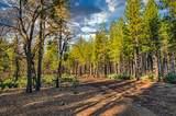 38 Lots Blue Ridge Mountain Estates - Photo 11