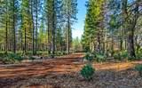 38 Lots Blue Ridge Mountain Estates - Photo 16