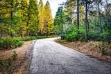 38 Lots Blue Ridge Mountain Estates - Photo 19