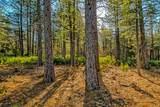 38 Lots Blue Ridge Mountain Estates - Photo 21