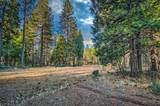 38 Lots Blue Ridge Mountain Estates - Photo 7