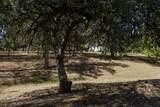 17687 Coyote - Photo 47