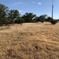 63 Quail Ridge - Photo 5