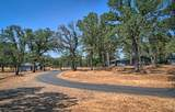 10604 Pebble Creek Ln - Photo 43